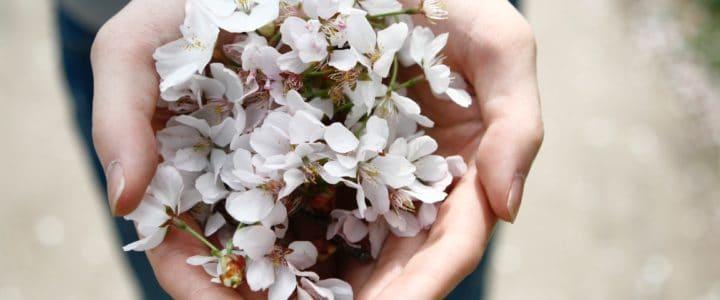 Als dit geen liefde is…de gesponsorde massage