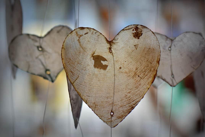 waak over je hart